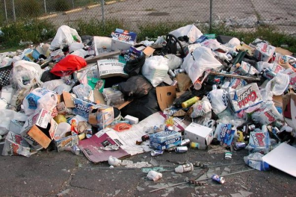 Город Пушкин погряз в отходах из-за прекращения вывоза мусора