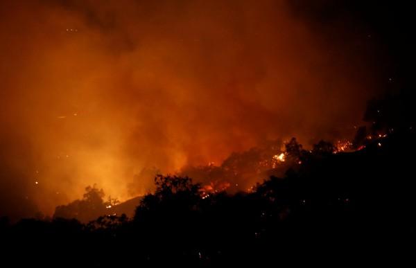 Калифорнийские пожары по площади превысили размеры Нью-Йорка