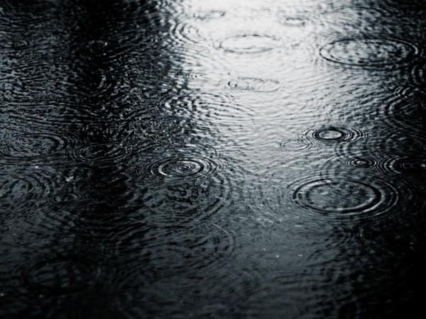 На Эстонию обрушился загадочный «черный» дождь