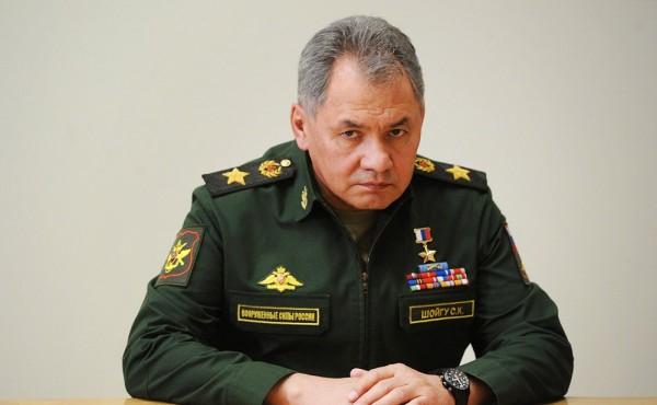 Шойгу: Россия и Сербия реализуют масштабную программу по ВТС