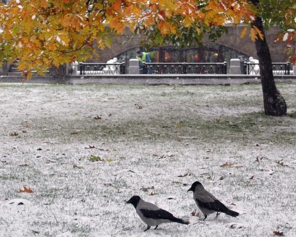 В Москве выпал первый снег и разбудил ностальгию