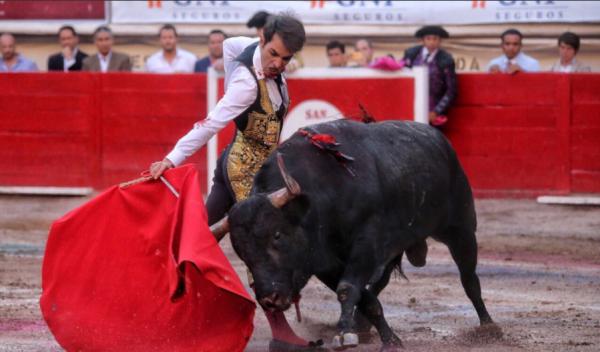 В Мексике матадор убил быка, пробившего его горло рогами
