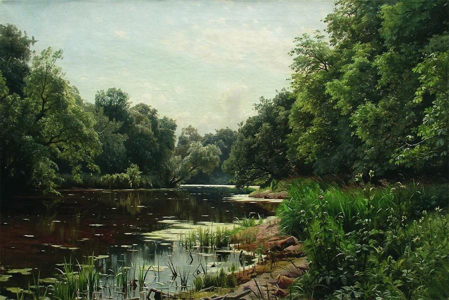 Озеро с фауной ушло под землю во Владимирской области