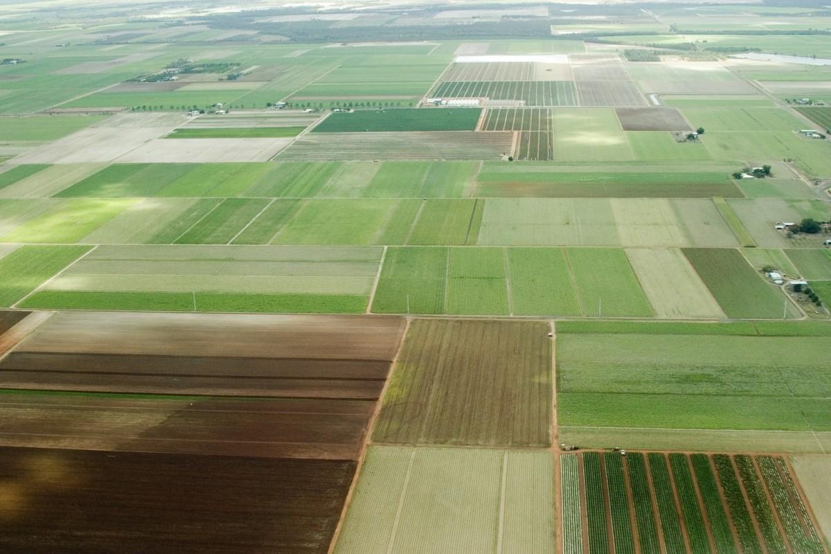 Срок получения «дальневосточного гектара» посоветовали уменьшить домесяца