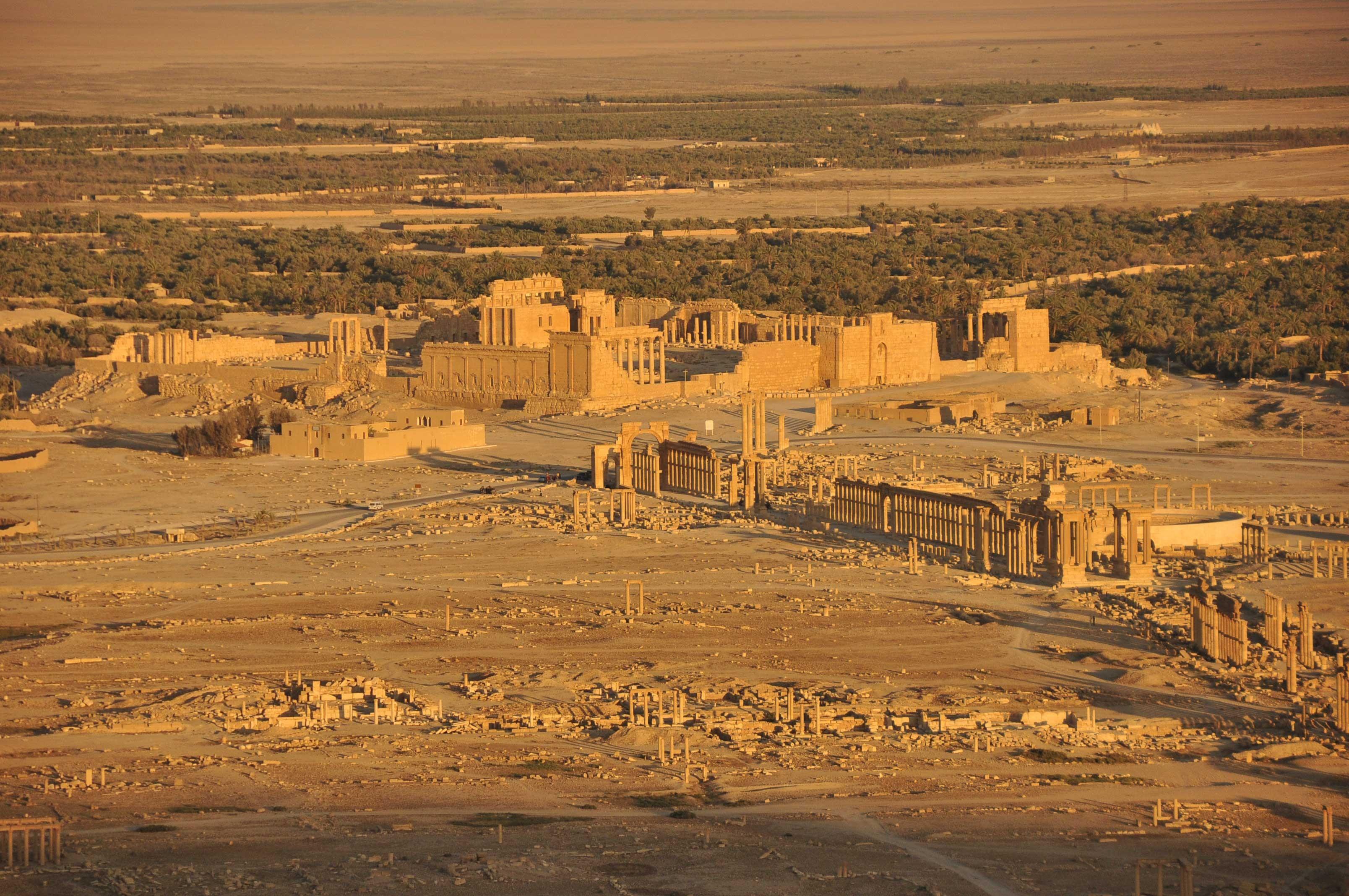 Трехмерную модель Пальмиры передали Сирии на цивилизованном консилиуме вПетербурге