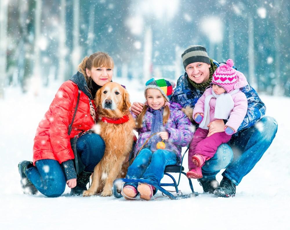 Около 250 объектов зимнего отдыха подготовят вцентральной части Москвы для новогодних праздников