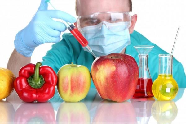 Учёные: Эксперименты с ГМО угрожают существованию человека