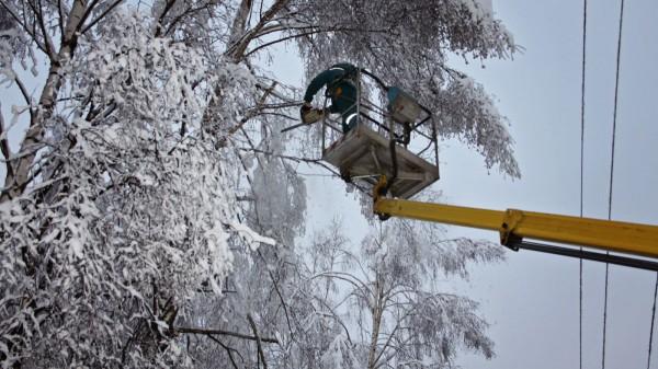 Пять районов Владимирской области остались без света из-за снегопада