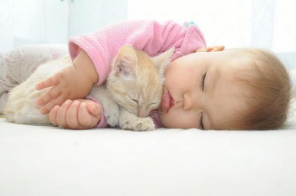 В Украине кошка задушила трёхмесячного младенца