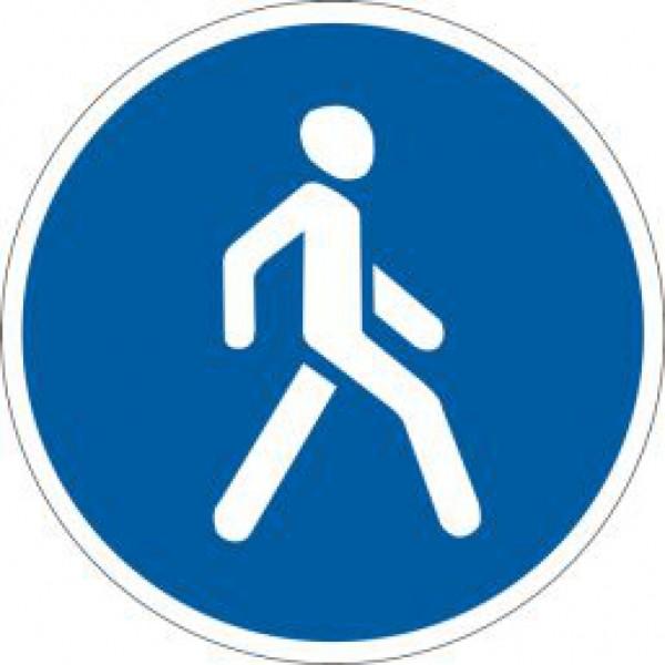 В Питере чиновники хотят пешеходную зону превратить в паркинг