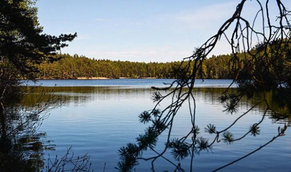 После столкновения с сухогрузом в Финском заливе опрокинулся катер