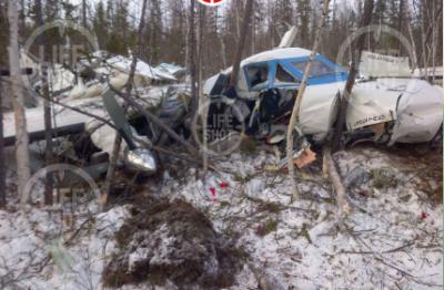 Опубликовано первое фото места крушения Let L-410 в Хабаровском крае