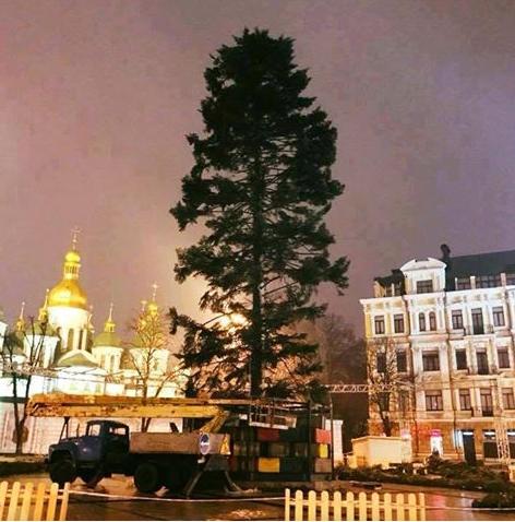 «Навид как наша жизнь». вглобальной паутине высмеяли главную елку Украинского государства