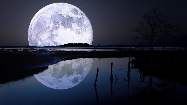 Фотографии пришельца наЛуне прислал луноход Chang'e 3