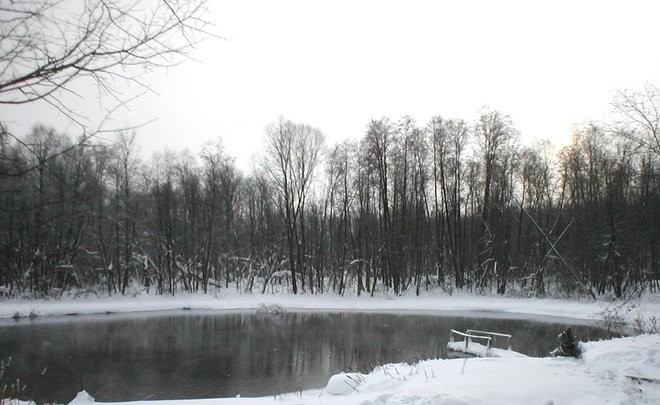ВКазани новогоднюю елку установят надне Голубого озера