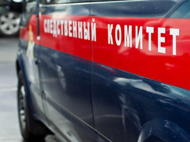Немая катастрофа. ВСибири глухонемая убила приятельницу вовремя потасовки