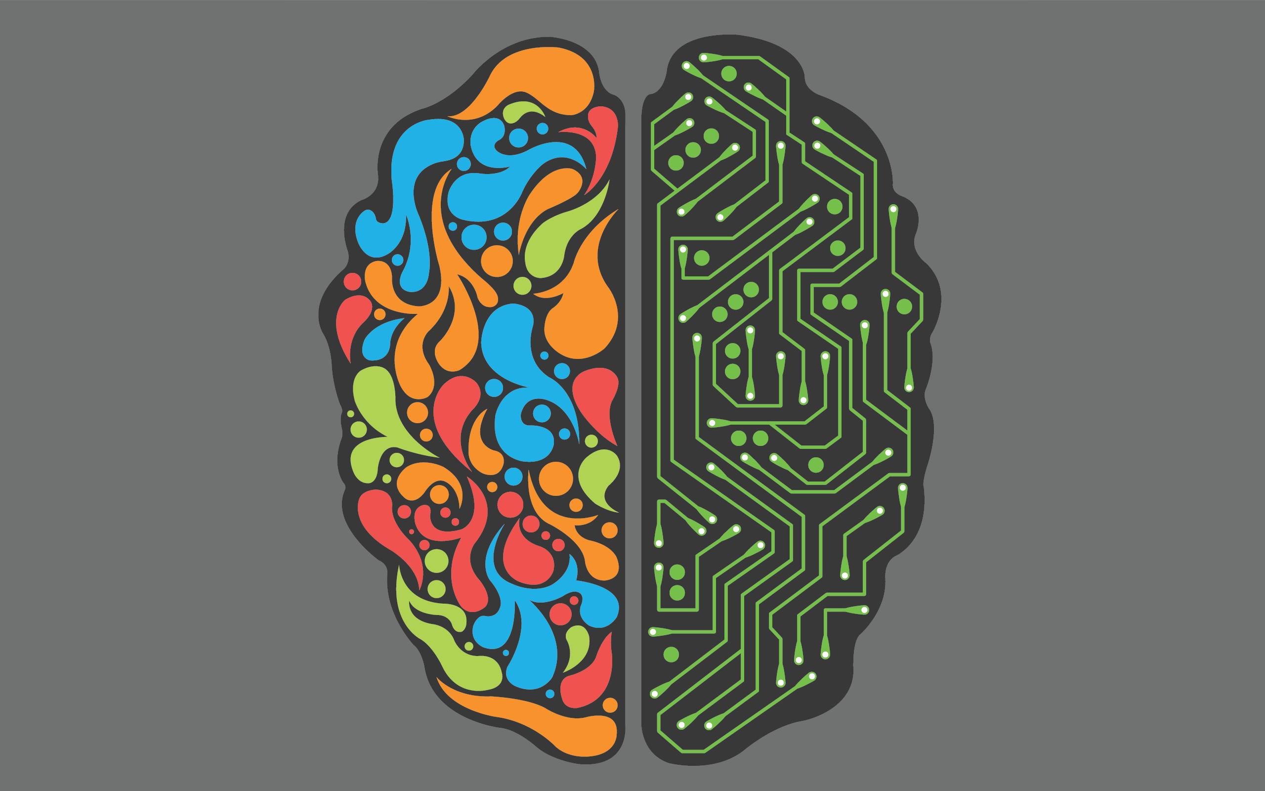 Структура мозга влияет нагрубость молодых людей — Ученые
