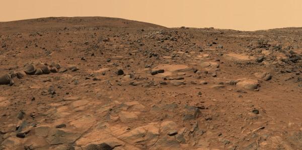 Арабские Эмираты готовы посадить на Марсе клубнику и пальмы