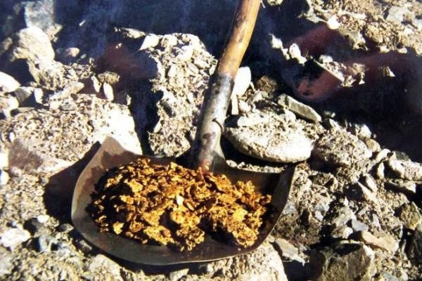 Объем добычи золота в Приамурье возрос