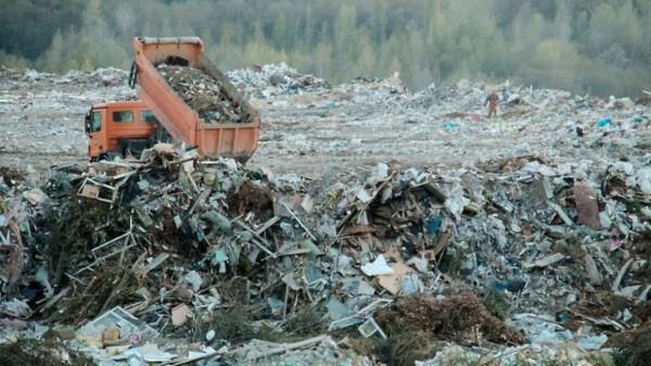 В МЧС установили главную причину неприятного запаха в Москве