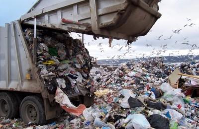 Новые мусоросжигательные заводы могут появиться в Подмосковье