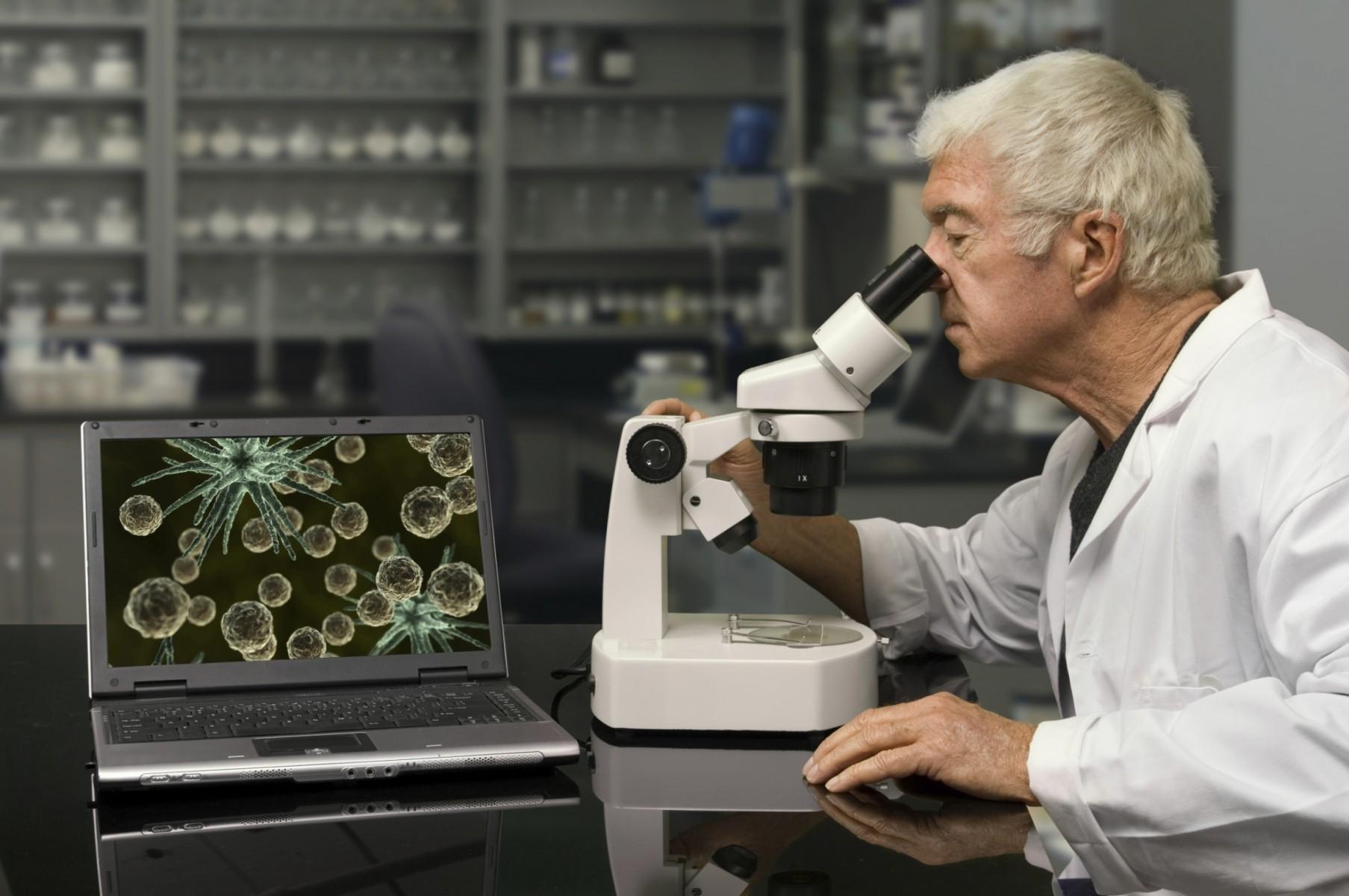 ВКанаде найден древнейший фотосинтезирующий организм