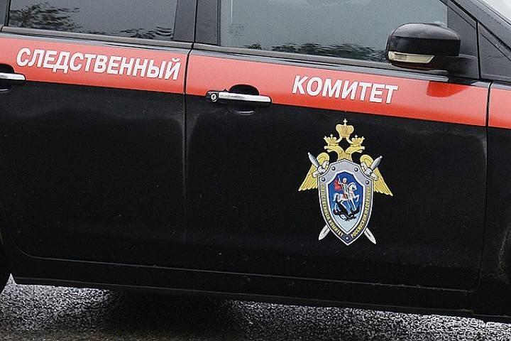 ВНовомосковске задержали иностранца, изнасиловавшего 13-летнюю девочку