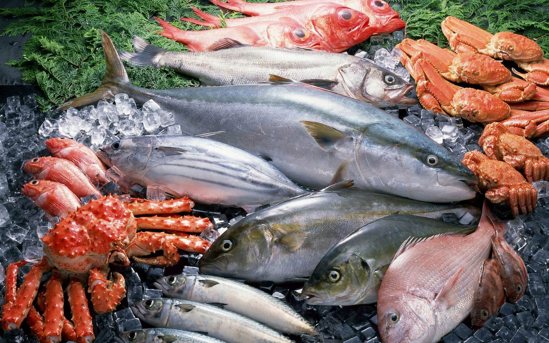 Вылов рыбы вАзово-Черноморском бассейне загод уменьшился на12%