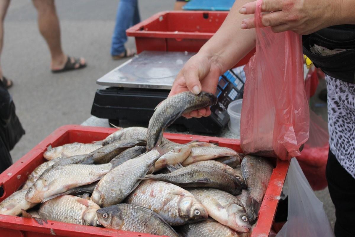 ВРФ могут внести изменения вправила вылова речной рыбы