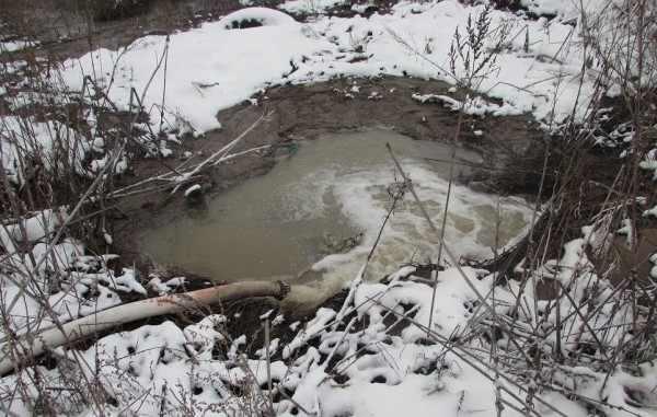 В Новосибирской области фекалии слили в лечебные грязи озера Карачи
