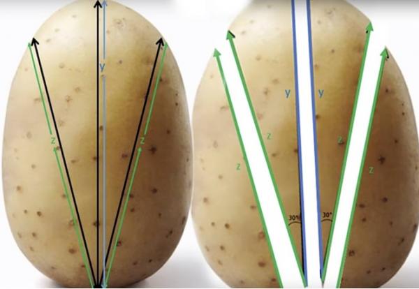 Математики рассказали, как приготовить идеальную жареную картошку