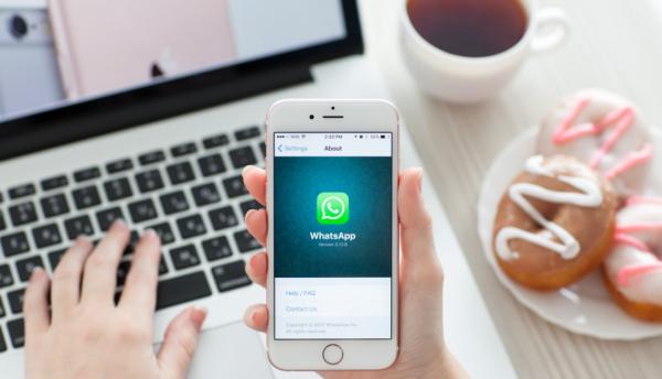 WhatsApp запустил бесплатную версию для бизнеса