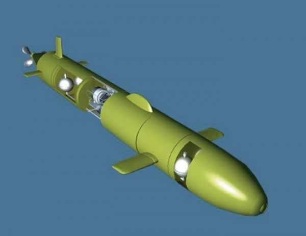В США объяснили, чем опасен российский подводный дрон «Статус 6»