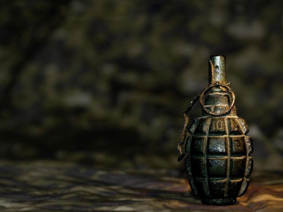 Вмерзшую влед гранату отыскали среди водоема наюго-западе столицы