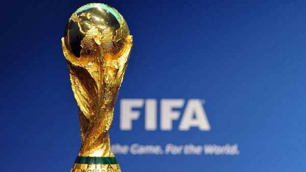 В Приамурье выявили контрафактные кубки FIFA