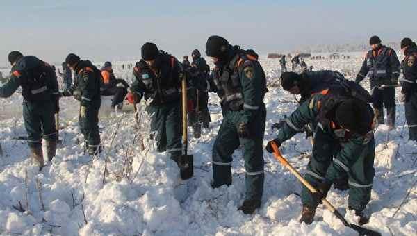 В Москву доставили генетические материалы родственников жертв катастрофы Ан-148