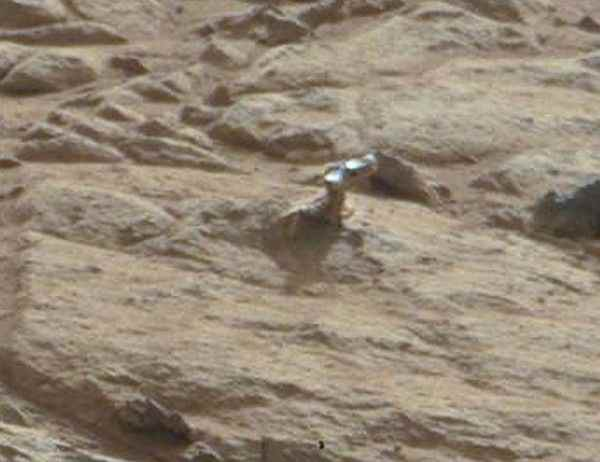 Уфологи нашли голову инопланетного динозавра на поверхности Марса