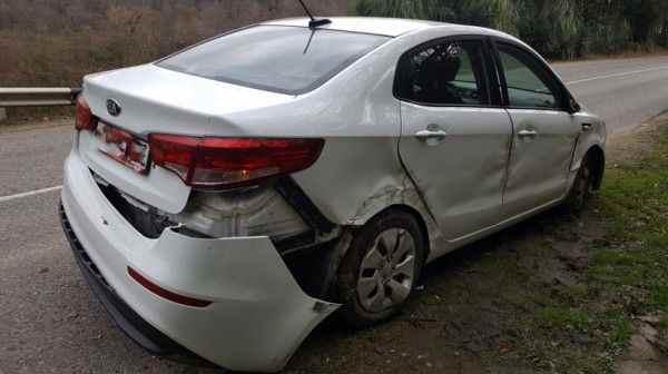 В Сочи пострадали два ребенка из-за выбежавшей на дорогу собаки