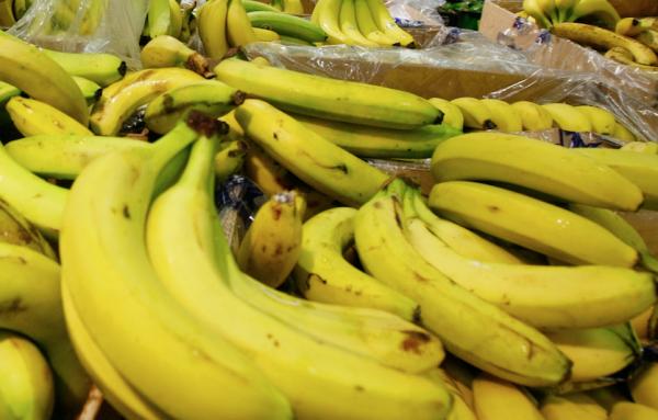 В Йошкар-Оле влюблённые на спор засунули зубную щетку и банан в задний проход