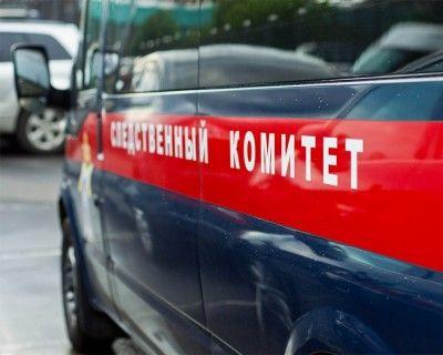 СК РФ рассказал о деталях расследования гибели ребенка в столичном детском саду