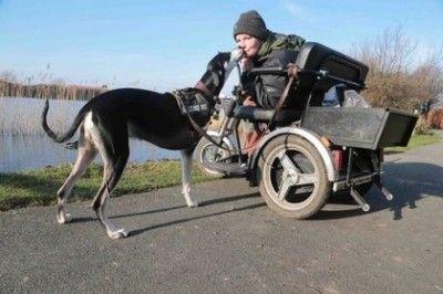Трехлапая собака спасла свою хозяйку от смерти