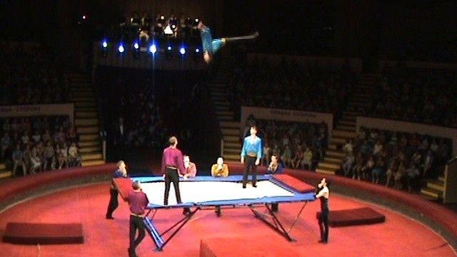 Вовремя представления вТульском цирке сорвалась воздушная гимнастка
