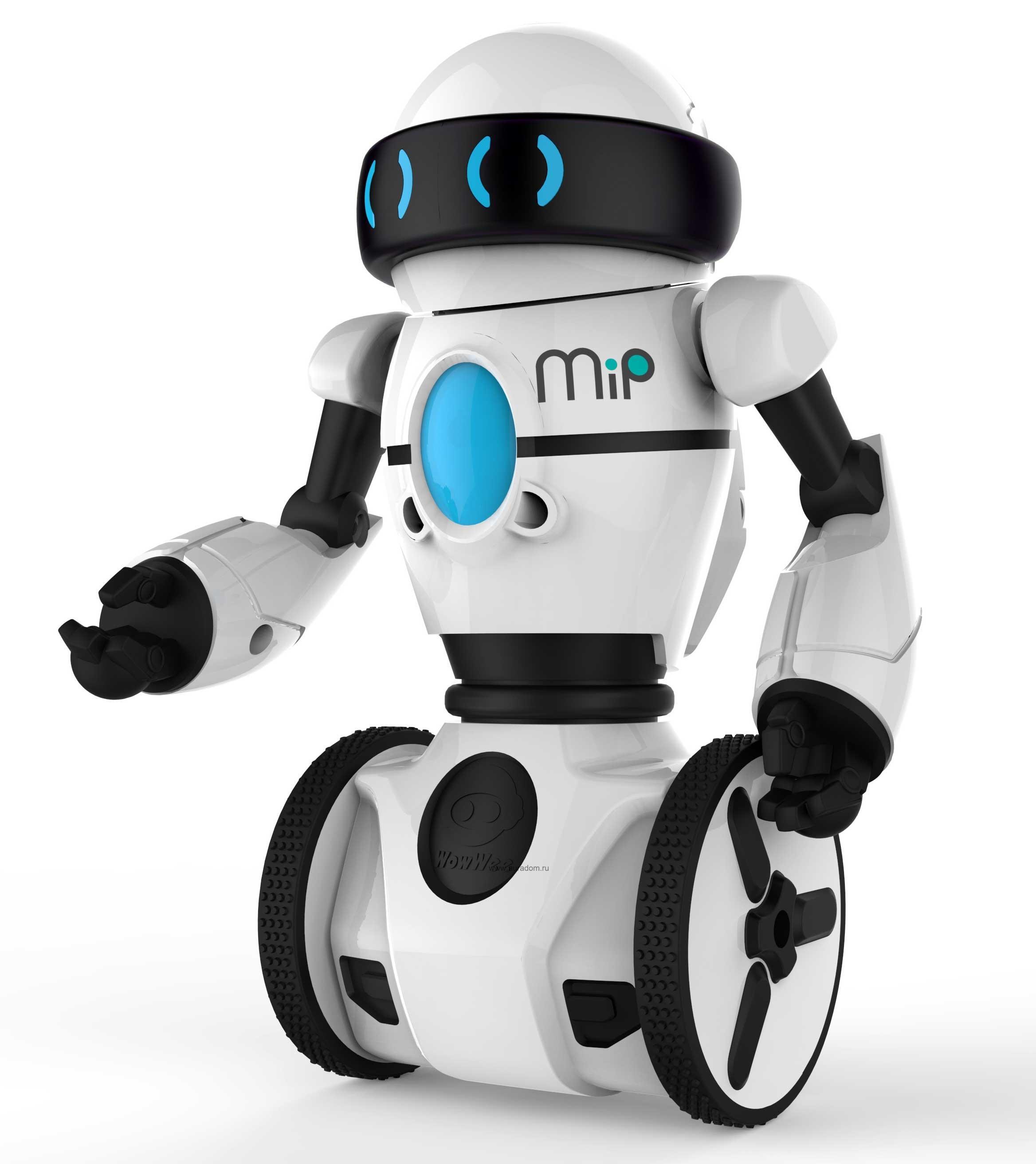 Разработанный вростовском институте робот будет торговать билеты взоопарке