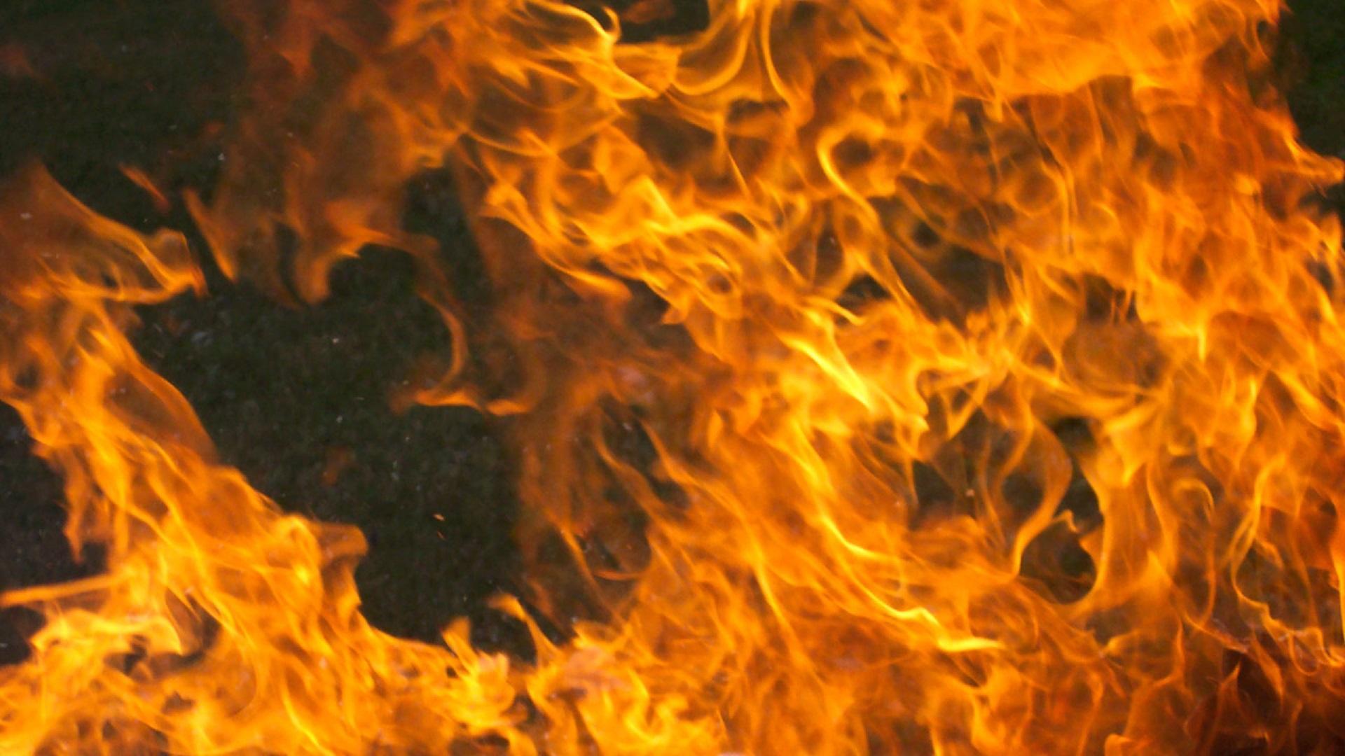 Интенсивный пожар наСавушкина распространился на500 квметров