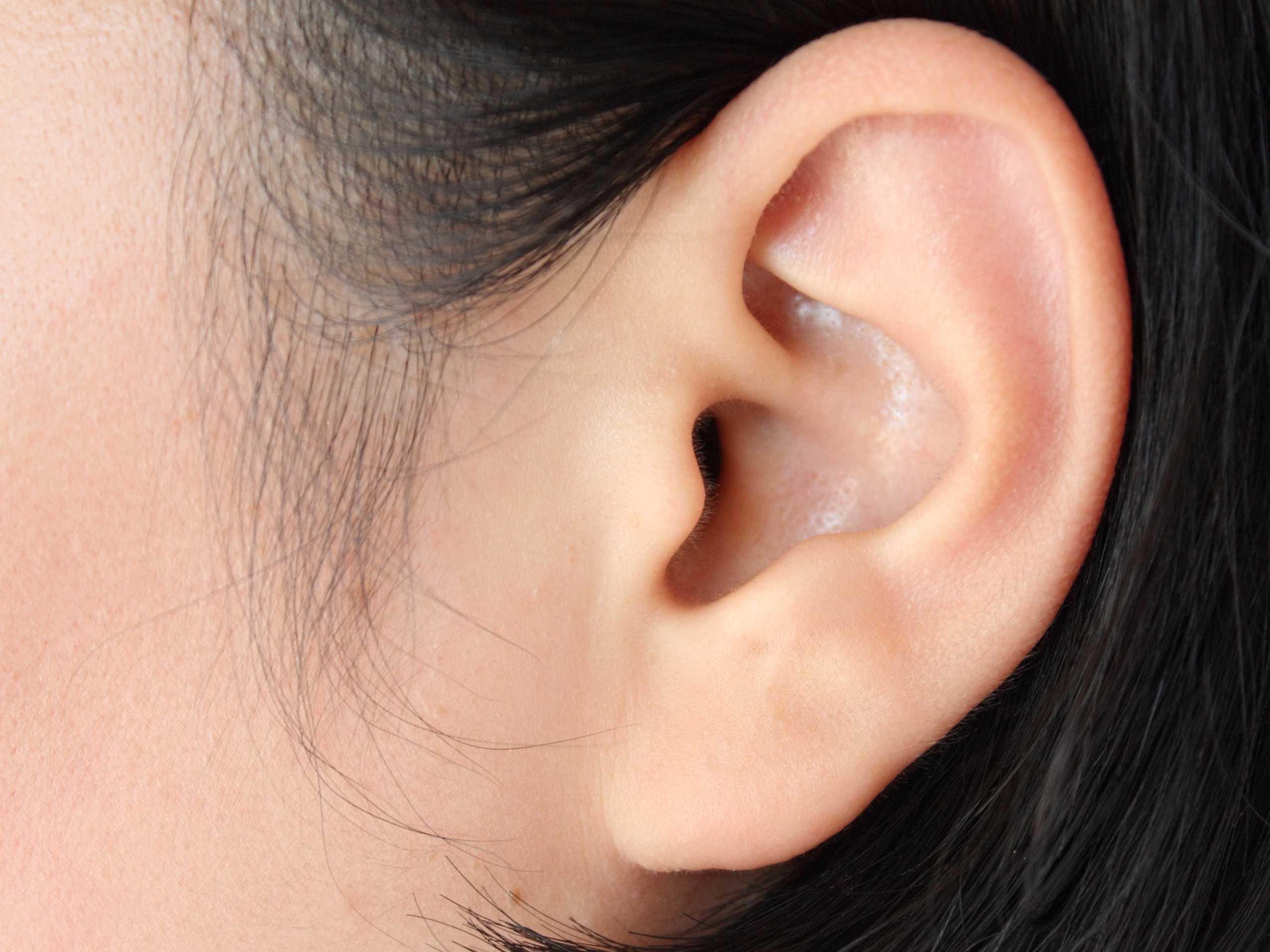 Ученые поведали о воздействии формы ушей наслух человека