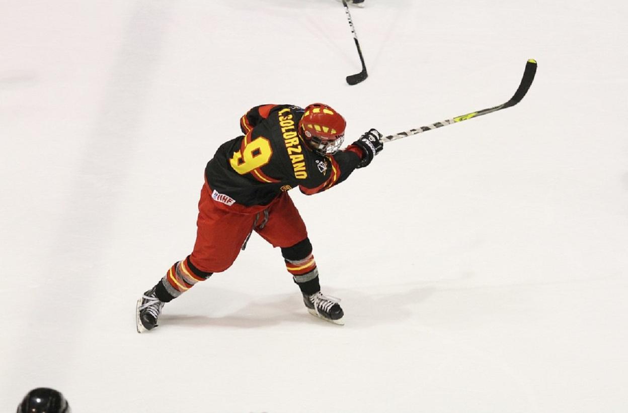 Врезультате происшествия надороге  вКанаде погибли 14 молодых хоккеистов