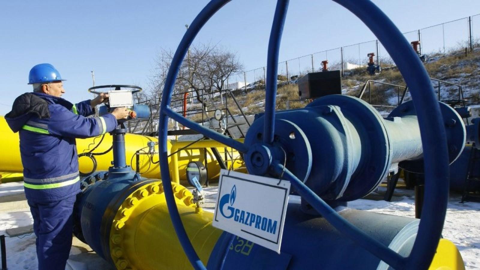Специалист оценила значимость русского газа для Европы