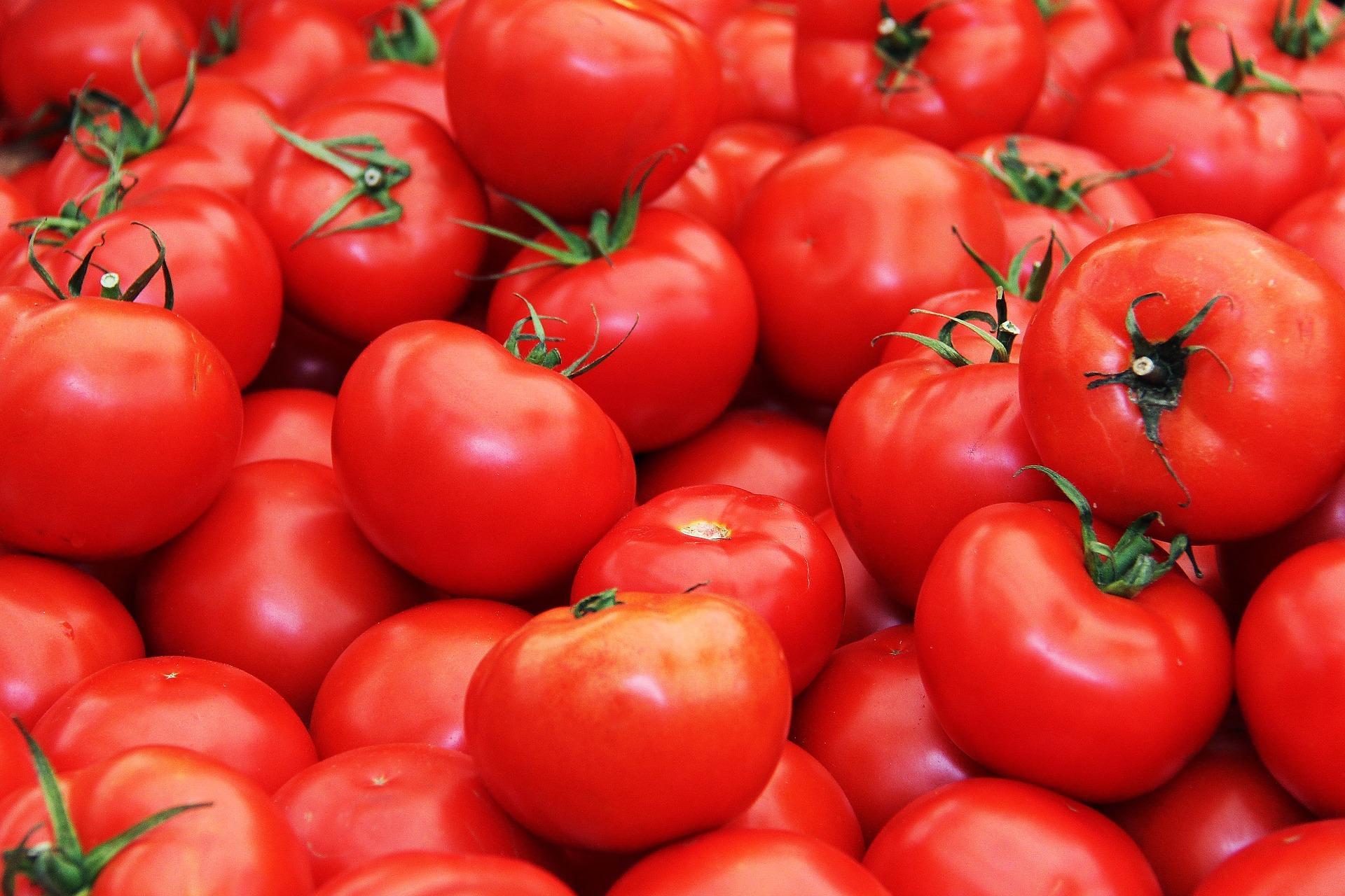 Россельхознадзор проведет еще одну инспекцию поставщиков томатов вТурции