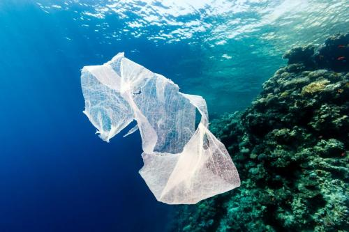Greenpeace показал на видео океан будущего с мусором вместо рыб