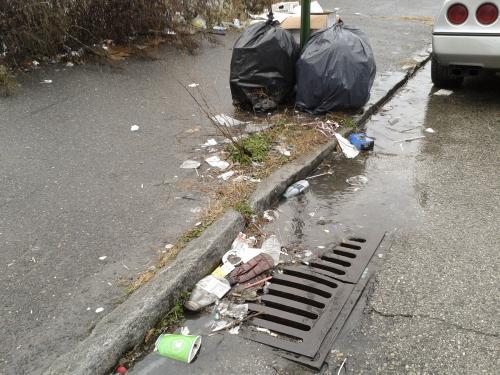 Мэра Омска вынудили осмотреть грязные улицы в центре города